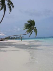 Malediven Jun 2010-95-klein