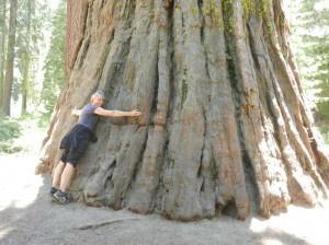 Yosemite--008-klein
